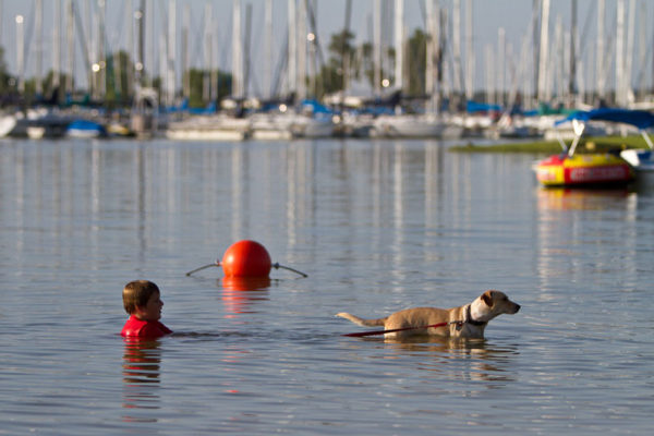 boy swimming with dog in lake